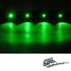 LED vert adapté à Scania Topline